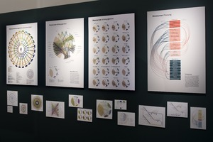 Picture: Diplomausstellung Design_Knowledge Visualization