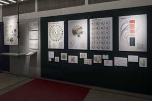 Bild:  Diplomausstellung Design_Knowledge Visualization