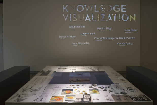 Picture: 1 Diplomausstellung Design: Knowledge Visualization