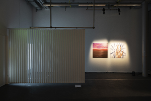 Picture: Full Sleep in Slow Motion_Installation view